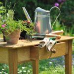 Садовые инструменты для начинающих