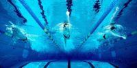 Справка для посещения бассейна: ответы на популярные вопросы